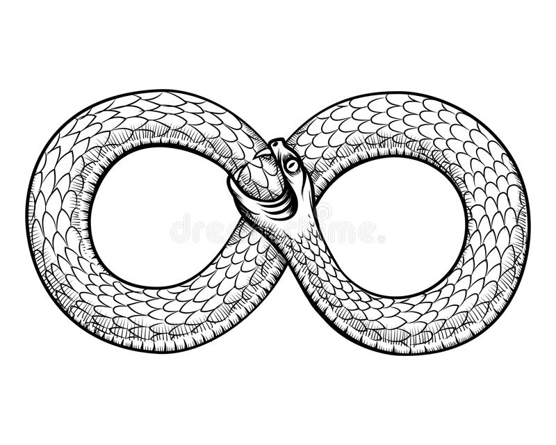 Snake curled in infinity ring. Ouroboros devouring. Its own tail. Serpent tattoo design, witchcraft masonic, vector illustration stock illustration