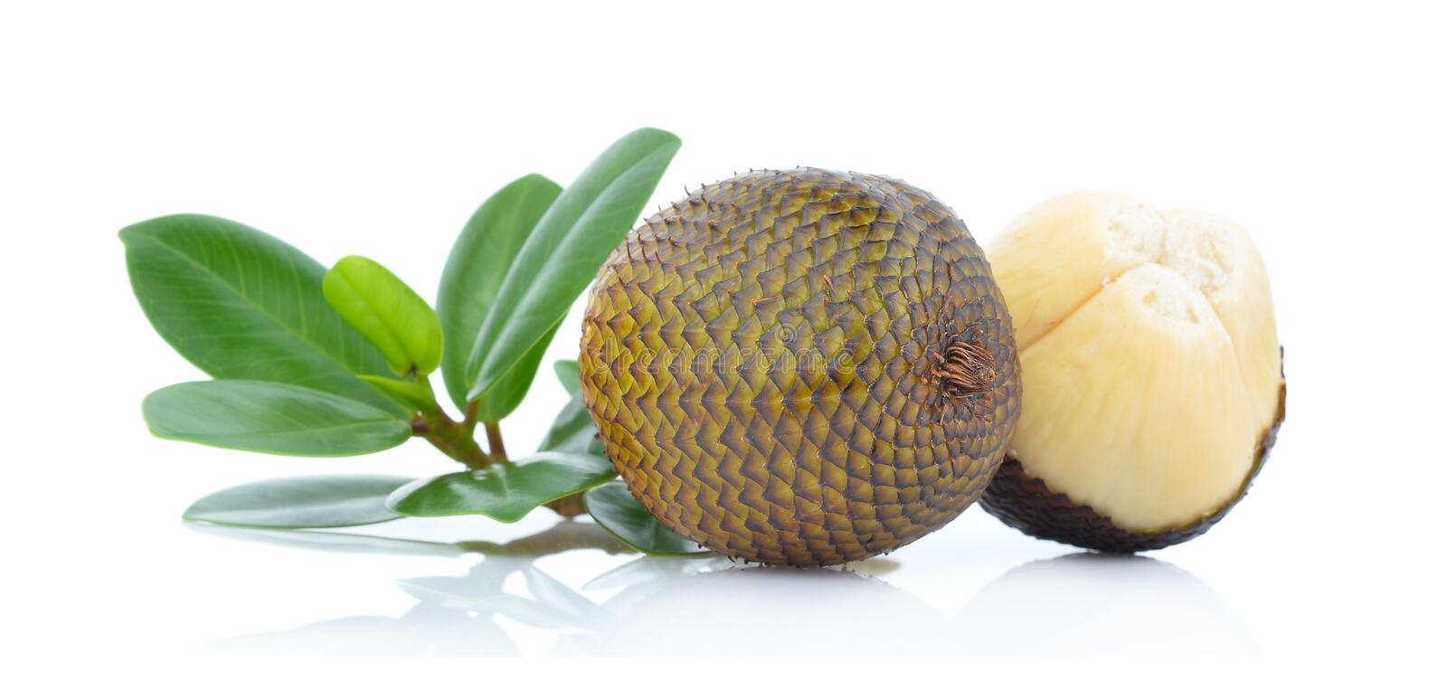 Snake fruit,Salacca,zakacca Salak Indo with green leaves isolated on white background.  stock photo