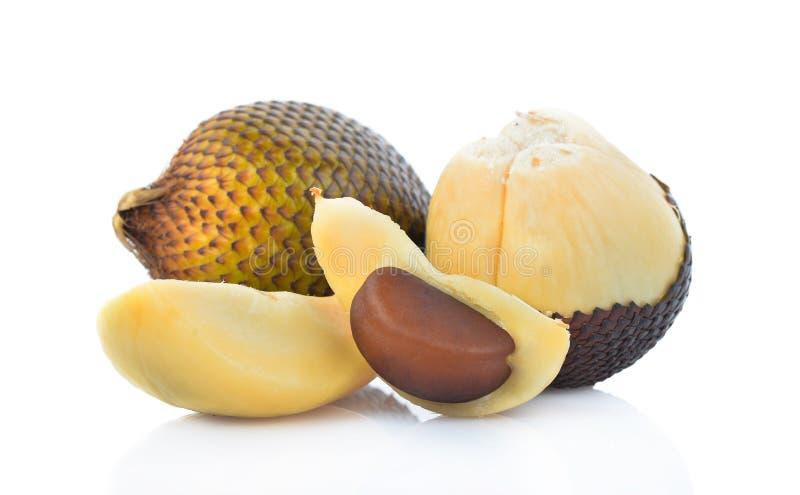 Snake fruit,Salacca,zakacca Salak Indo isolated on white background.  royalty free stock photo