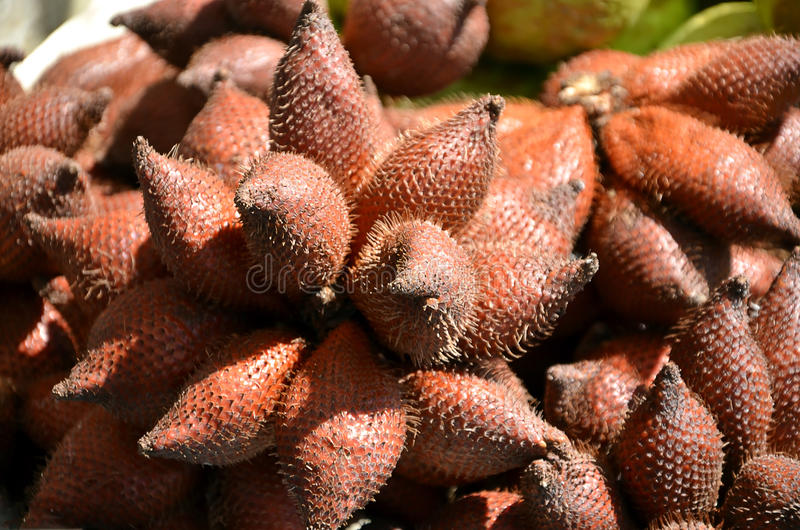 Snake fruit tropical exotic fruit detail photography stock photography