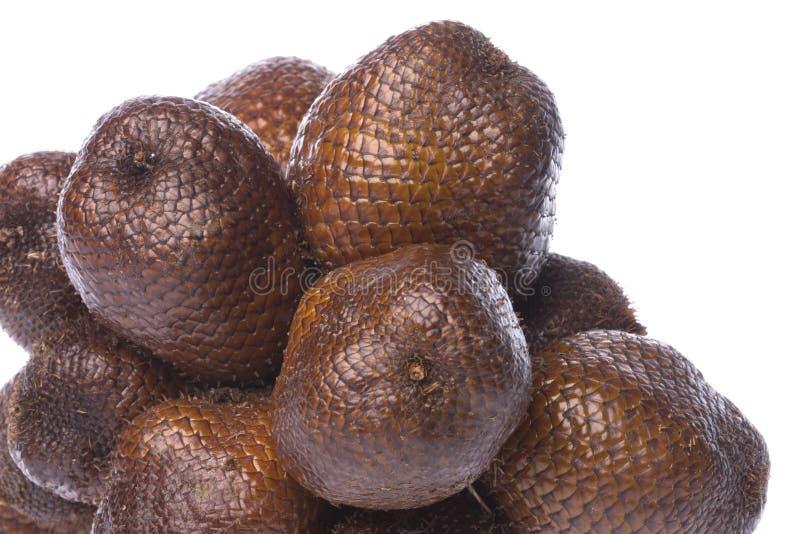 Snake Fruits Isolated stock images