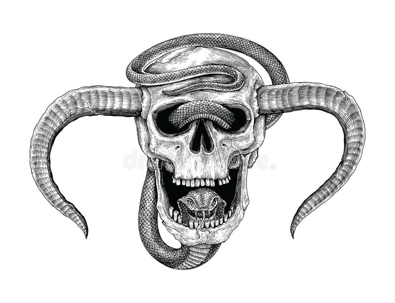 Snake with human skull hand drawing vintage engraving illustration for tattoo vector illustration