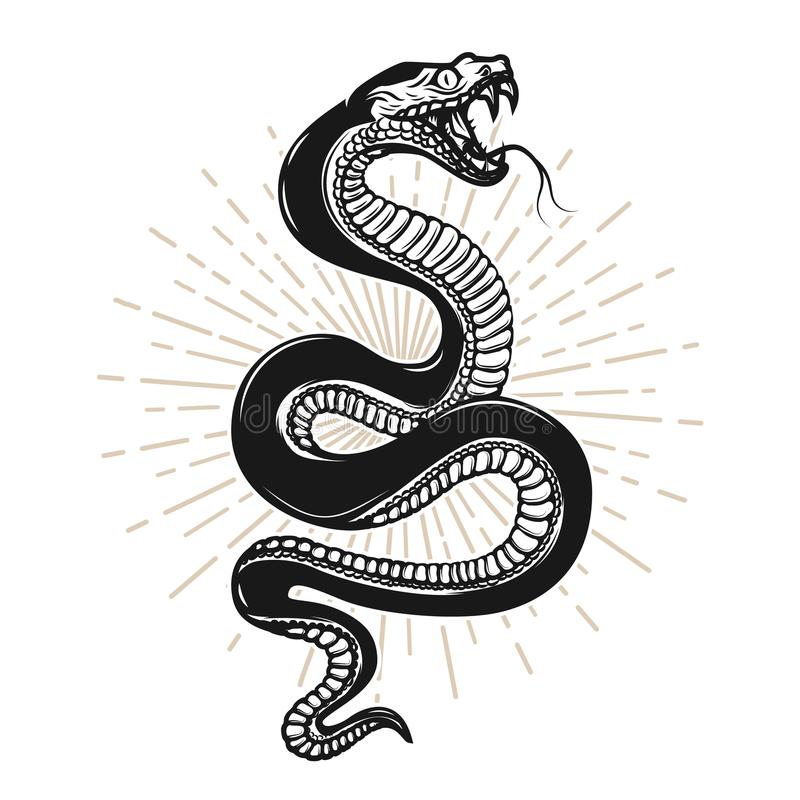 Free Snake Illustration On White Background. Design Element For Poster, T Shirt, Emblem, Sign. Royalty Free Stock Photos - 116545638