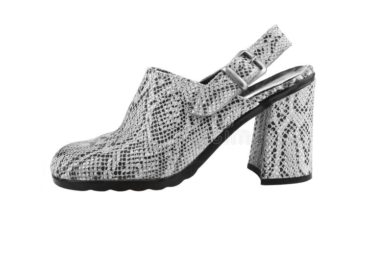 Download Snake Leather Women Shoe Stock Photography - Image: 28683012