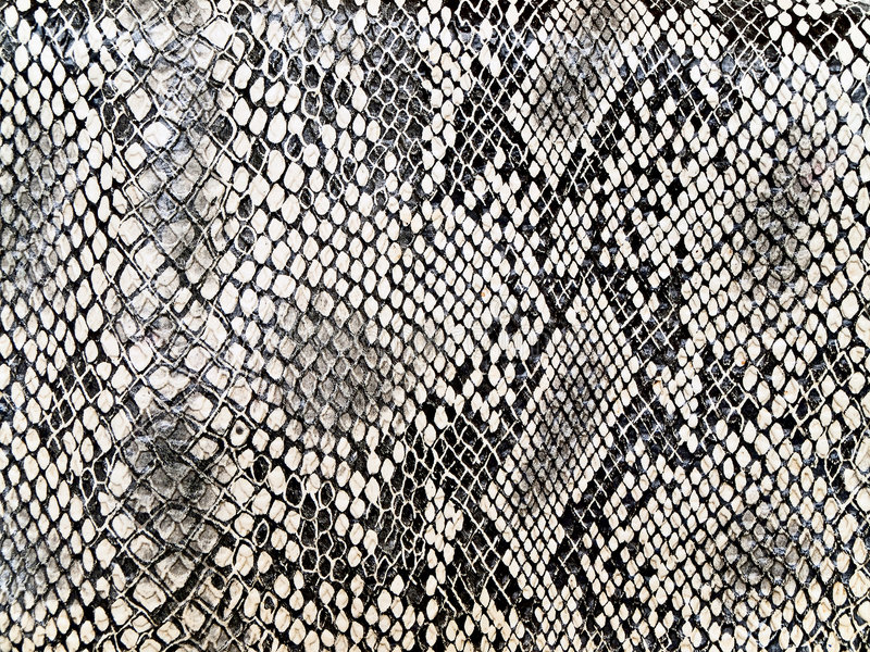 Snake pattern. Black and white background in snake pattern style stock photos