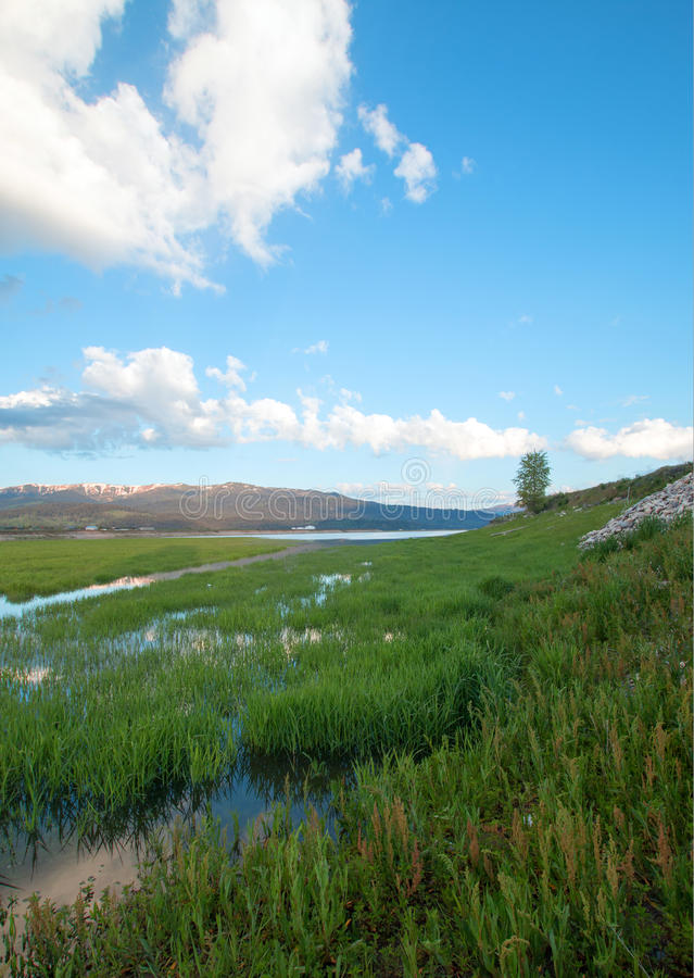 Snake River and grassy bank in the morning under cumulus clouds in Alpine Wyoming stock photo