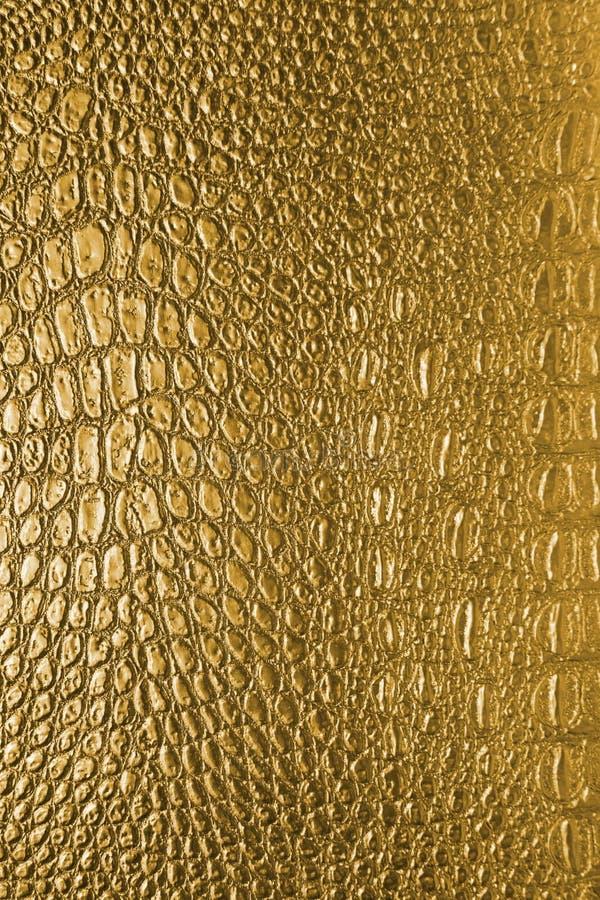 Snake skin. Detail of snake skin coloration royalty free stock image