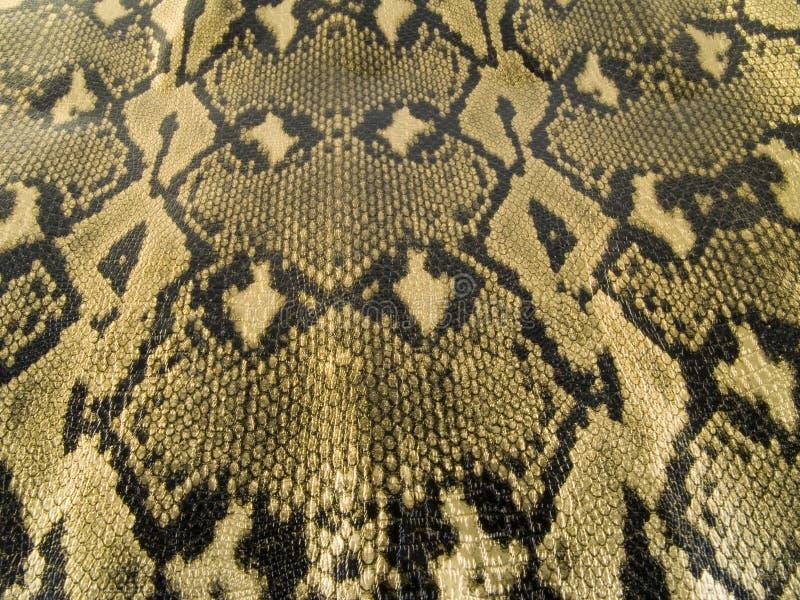 Snake skin. Close up on snake skin royalty free stock photography