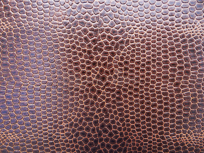 Download Snake skin stock image. Image of texture, close, dark - 24579929