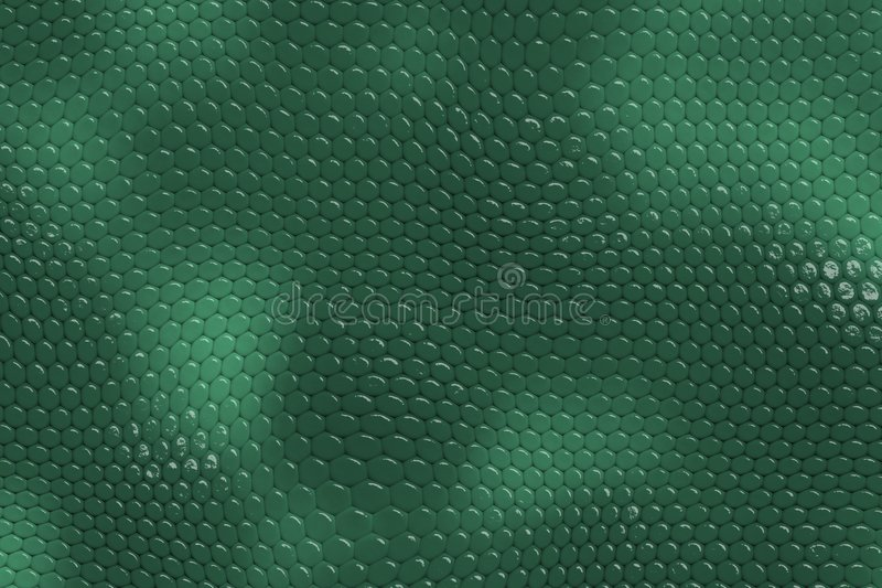 Download Snake Skin Background stock illustration. Illustration of background - 220972