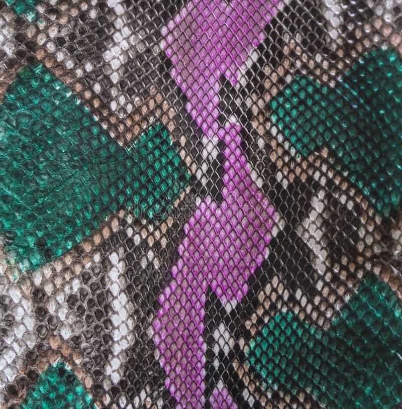 Snake skin. Color Snake skin as background royalty free stock images