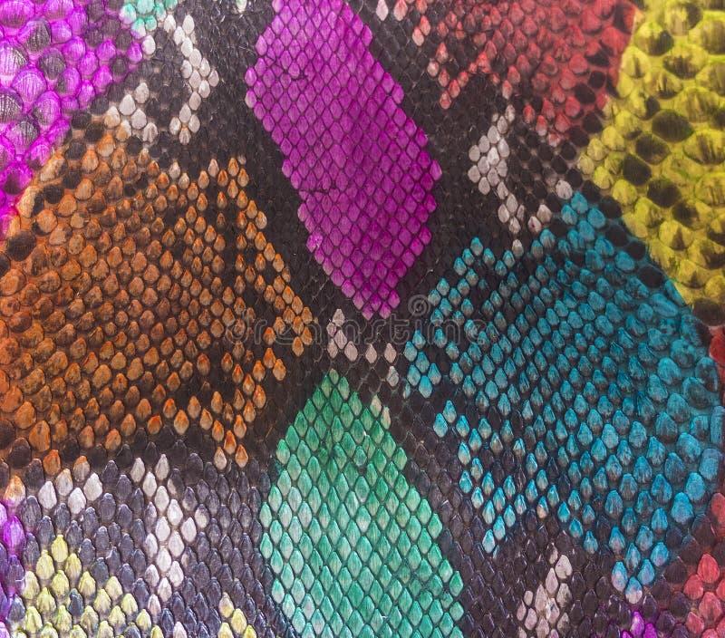 Snake skin. Color Snake skin as background stock photography