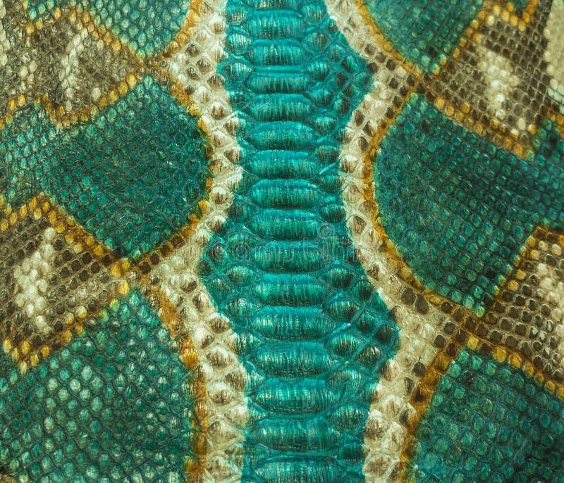 Snake skin. Color Snake skin as background stock photo