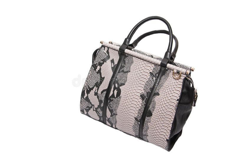 Download Snake skin leather bag stock image. Image of casual, luxury - 35813215