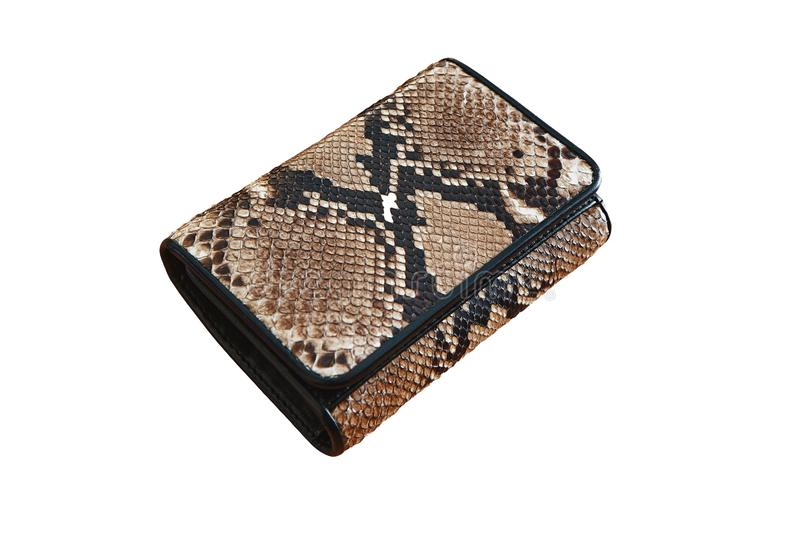Snake skin money wallet in brown and black. Isolated on white background royalty free stock photos