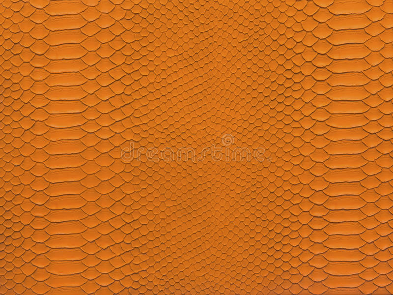 Snake skin orange color stock photo