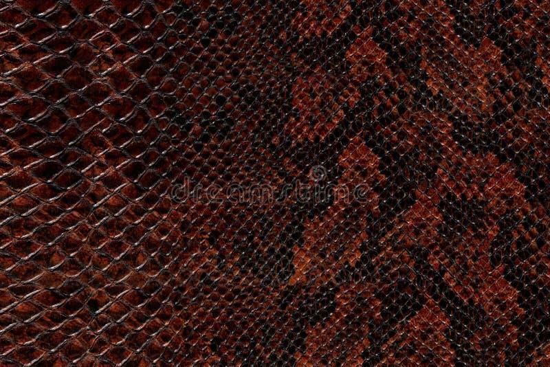 Snake skin pattern. High quality snake skin pattern royalty free stock image