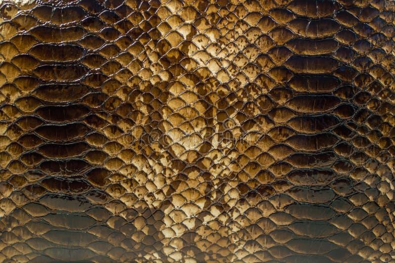 Download Snake Skin Pattern Background Stock Image - Image of backdrop, element: 39513451