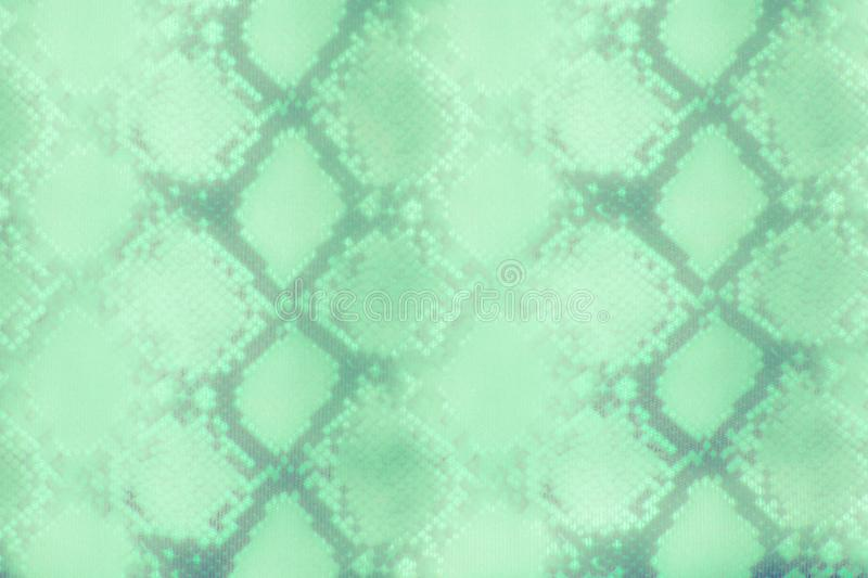Snake skin pattern texture repeating seamless green . Vector. Texture snake. Fashionable print. Fashion and stylish backgroun royalty free stock images