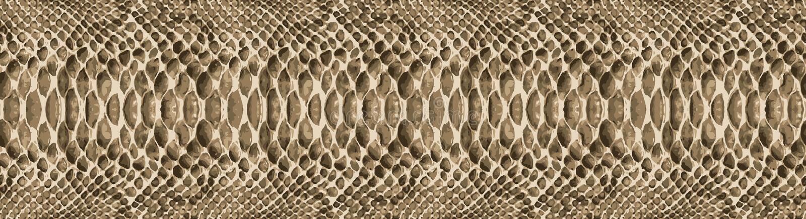 Snake skin pattern texture repeating seamless. Vector. Texture snake. Fashionable print. fashionable and stylish background. Texture for your design