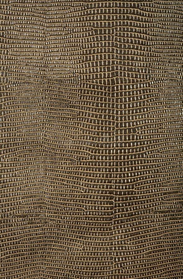 Snake skin texture. Background, macro royalty free stock photography