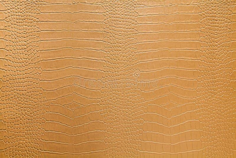 Snake skin. Texture of snake skin in light color tone stock photos