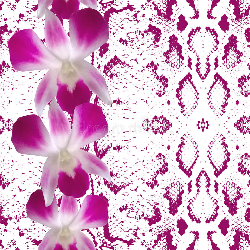 Snake skin texture pink flowers, orchid stock illustration