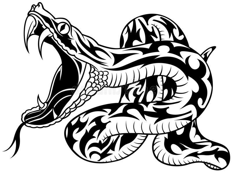 Download Snake Tattoo stock vector. Illustration of adornment, crawling - 9064460