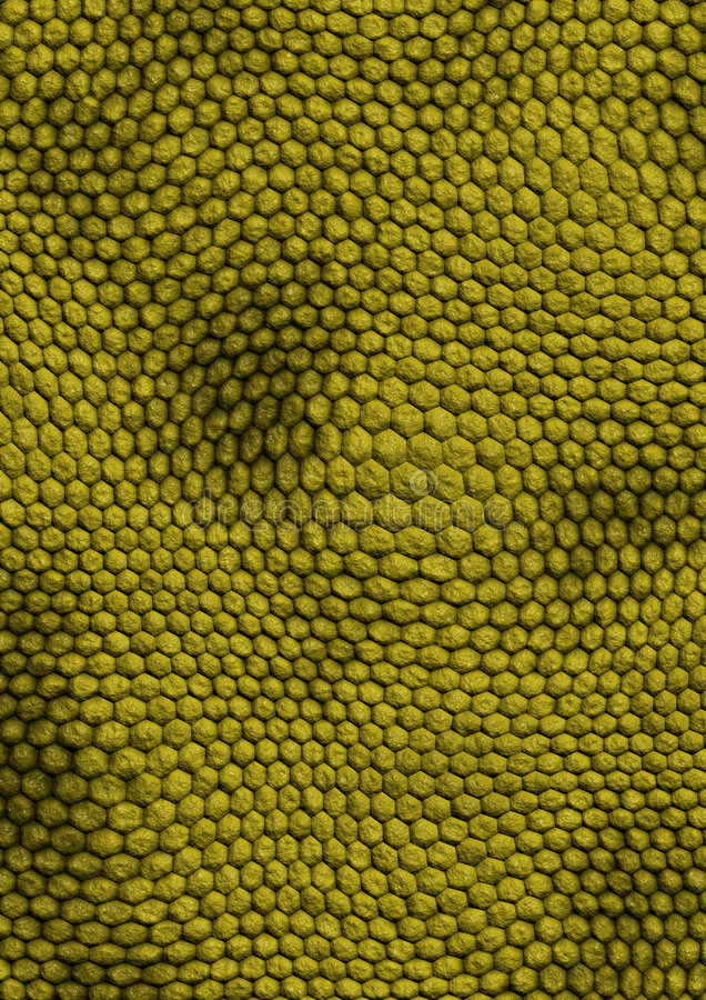 Snakes_texture_green libre illustration