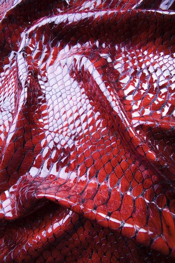 snakeskin стоковое изображение