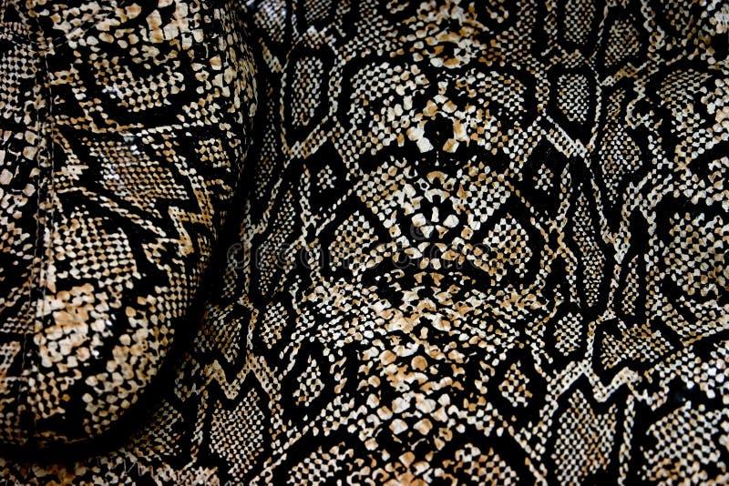 Snakeskin royalty free stock photo
