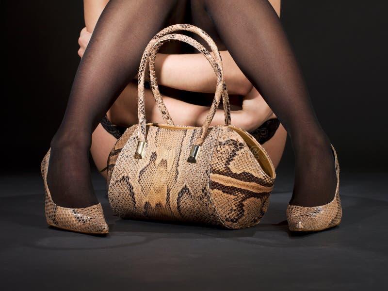 Download Snakeskin Shoes And Handbag Stock Image - Image: 41477009