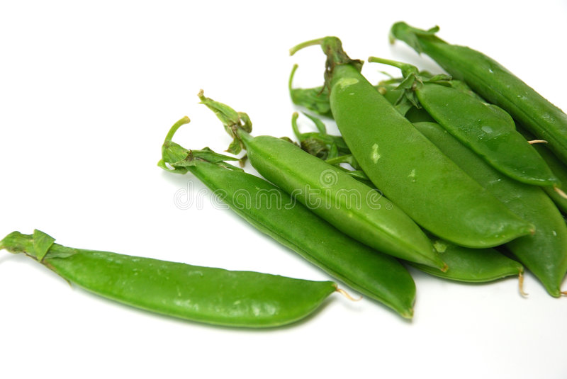 Snap pea. S (also known as Sugar peas, or Mange-touts in Britain) are a cultivar group of edible-podded peas that differ from snow peas in that their pods are royalty free stock photo