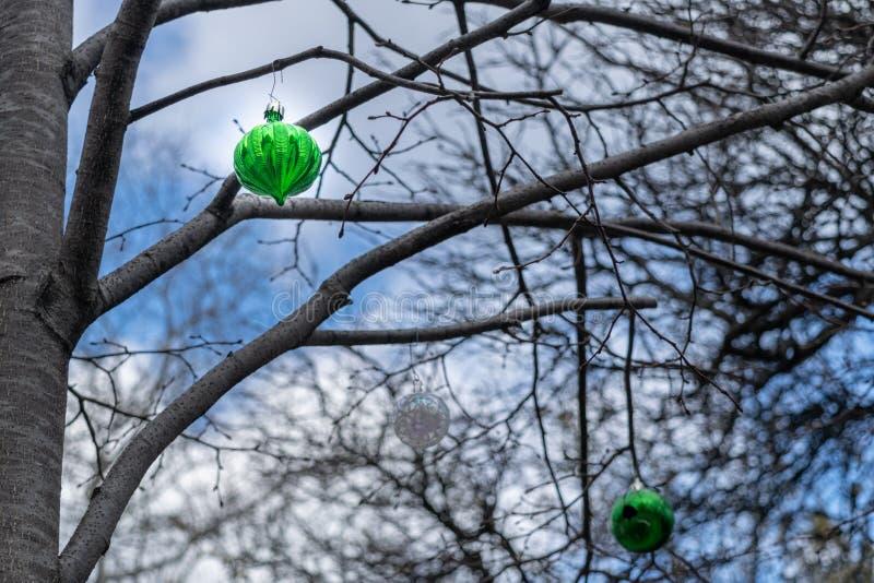 3 snarlika ledsna seende julgranprydnader som hänger från filialerna av ett avlövat träd i midtownen Manhattan arkivfoto