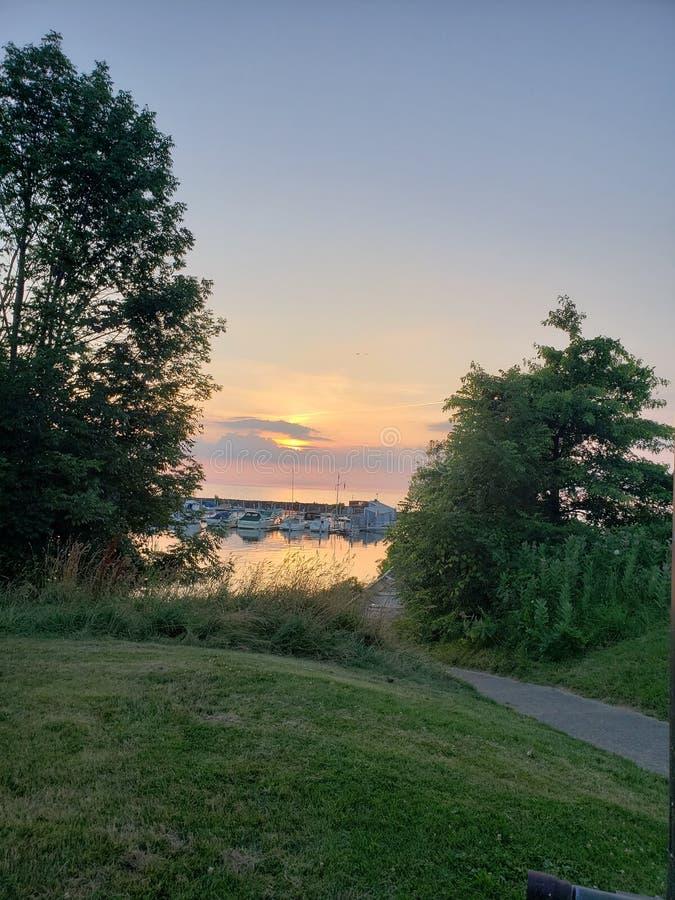 Sneak peek. Trees, water, sunset, calm royalty free stock image