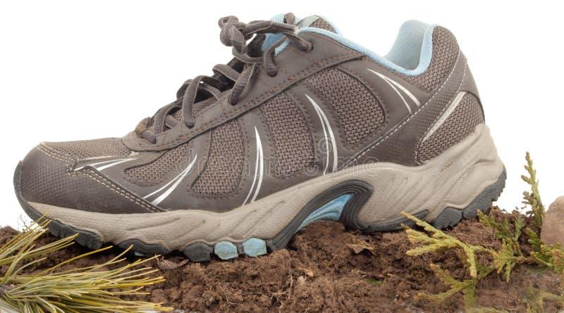 Download Sneaker In Nature stock image. Image of sneaker, shoe - 28396461