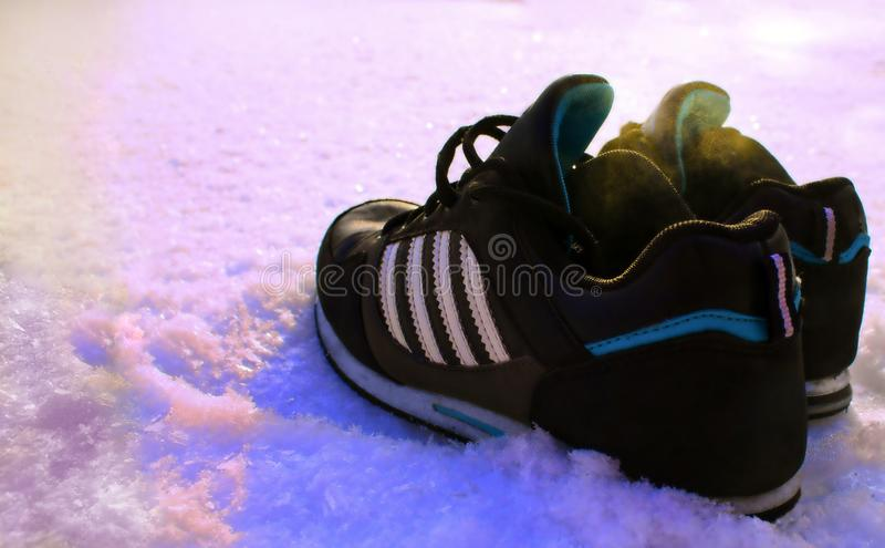 Sneakers in the snow stock photography