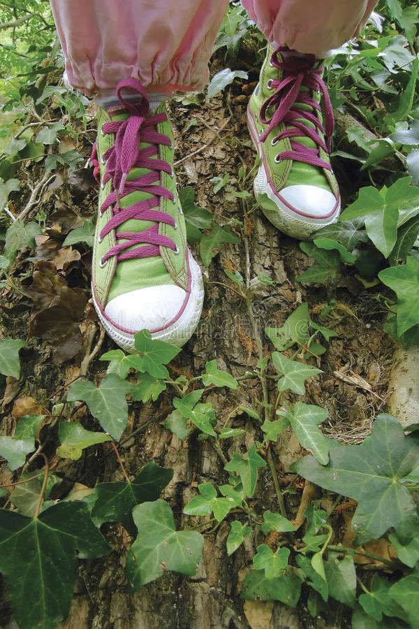 Sneakers, tennis shoe royalty free stock photos