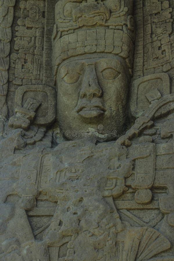 Sned Mayan stenar, Quirigua fördärvar, Guatemala royaltyfria bilder