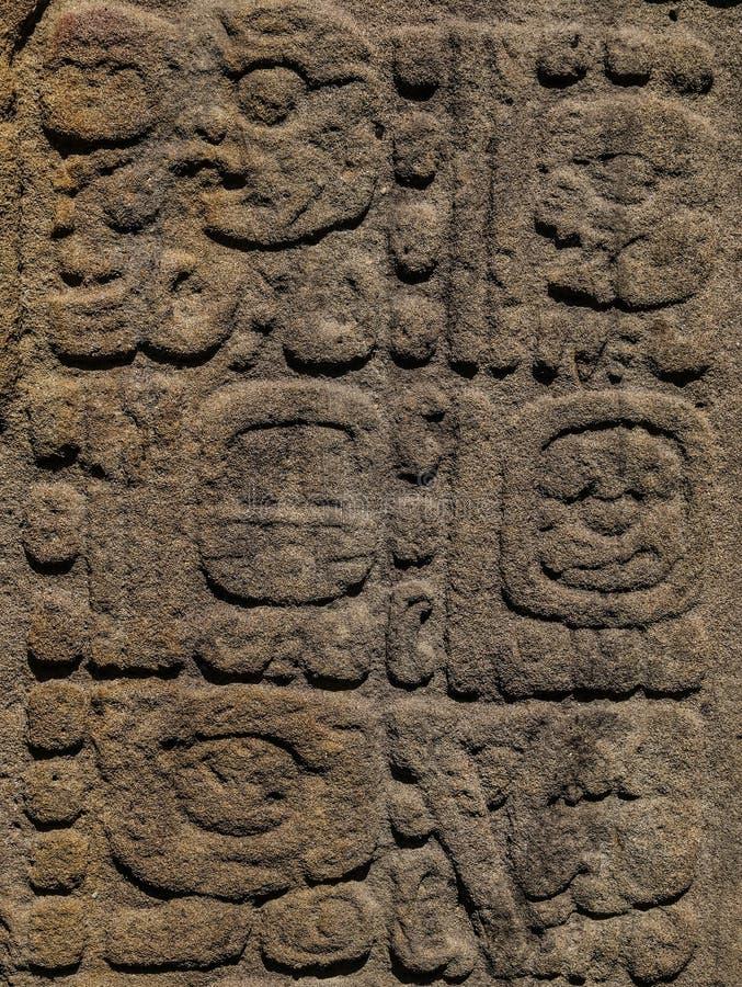 Sned Mayan stenar, Quirigua fördärvar, Guatemala arkivbilder