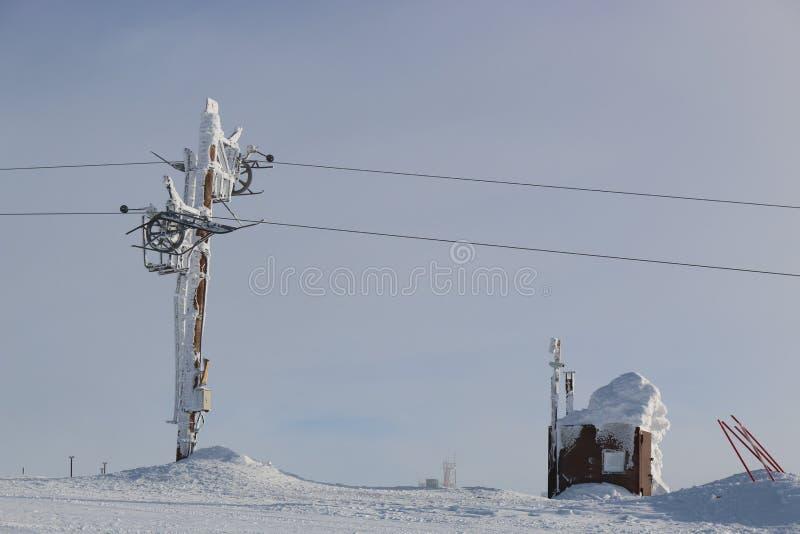 In sneeuw stock foto's