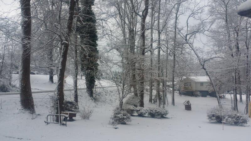 sneeuw royalty-vrije stock fotografie