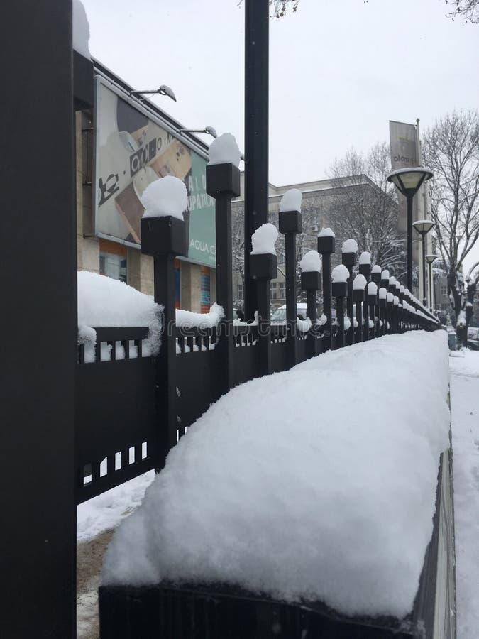 sneeuw stock fotografie