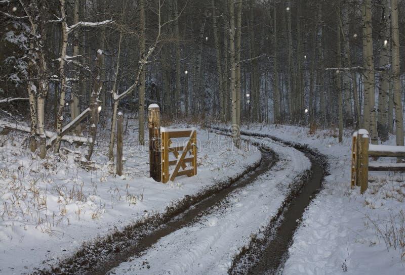 Sneeuw aandrijving royalty-vrije stock foto