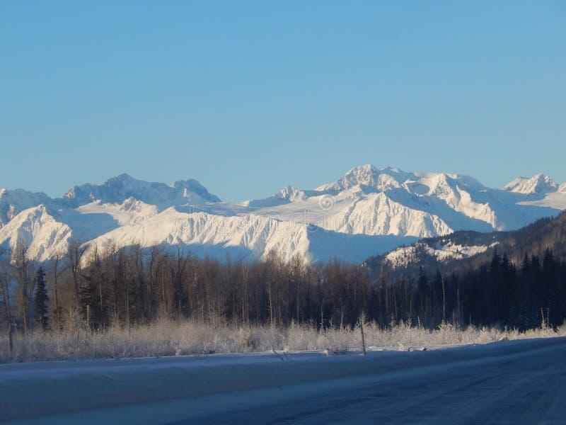 Sneeuw afgedekte bergen langs Haines Highway royalty-vrije stock foto's