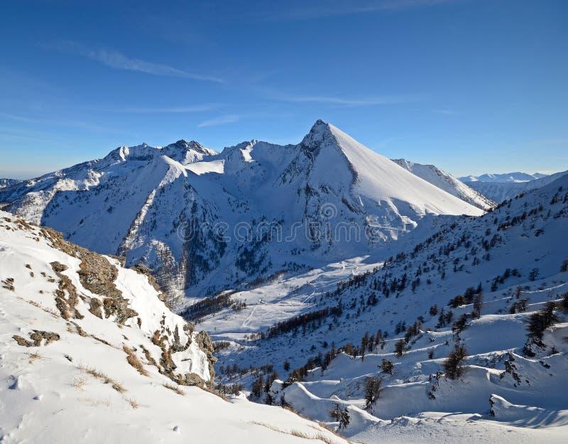 Sneeuw afgedekte bergpieken stock fotografie