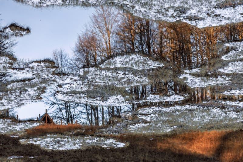 Sneeuw behandeld installatie-gevuld bergmeer in de bergbos van de de herfstkaukasus bij zonsondergang Mooi toneellandschap met wa stock fotografie