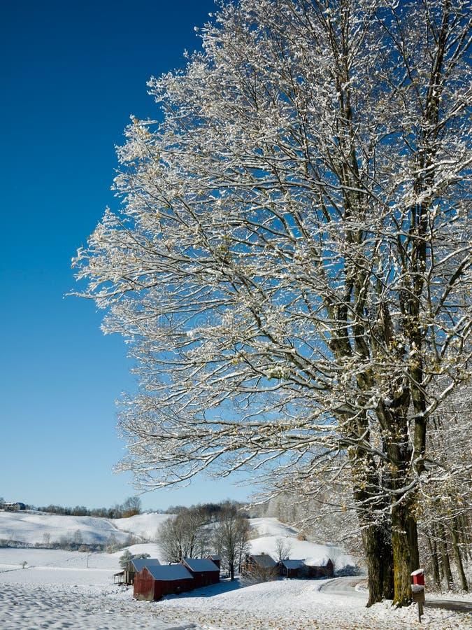 Sneeuw behandeld landbouwbedrijf royalty-vrije stock fotografie