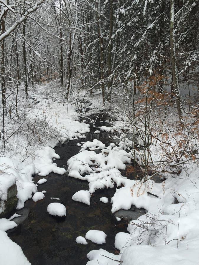 Sneeuw Behandelde Beek stock fotografie