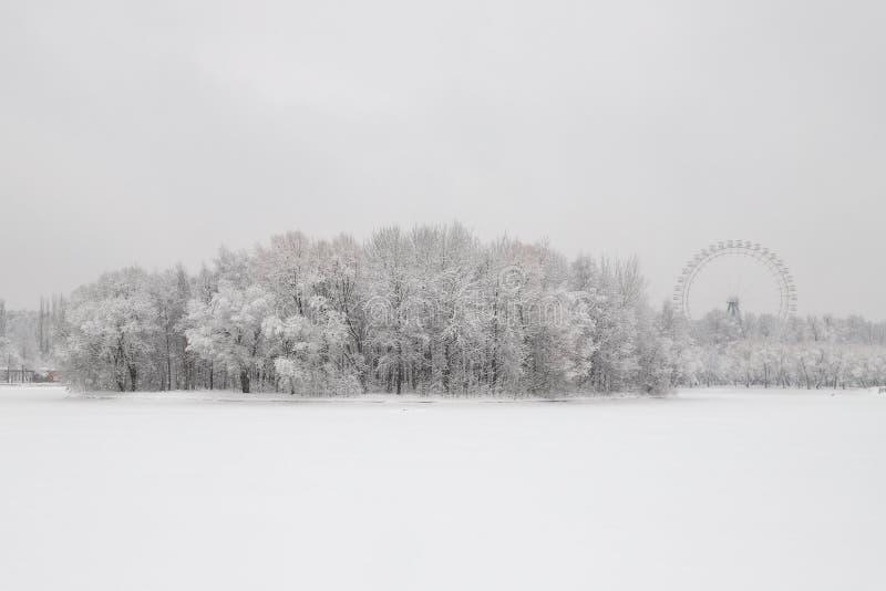 Sneeuw behandelde bomen op het eiland en het ferriswiel royalty-vrije stock afbeelding
